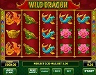 Wild Dragon slot